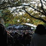 Moseley Folk Festival crowd